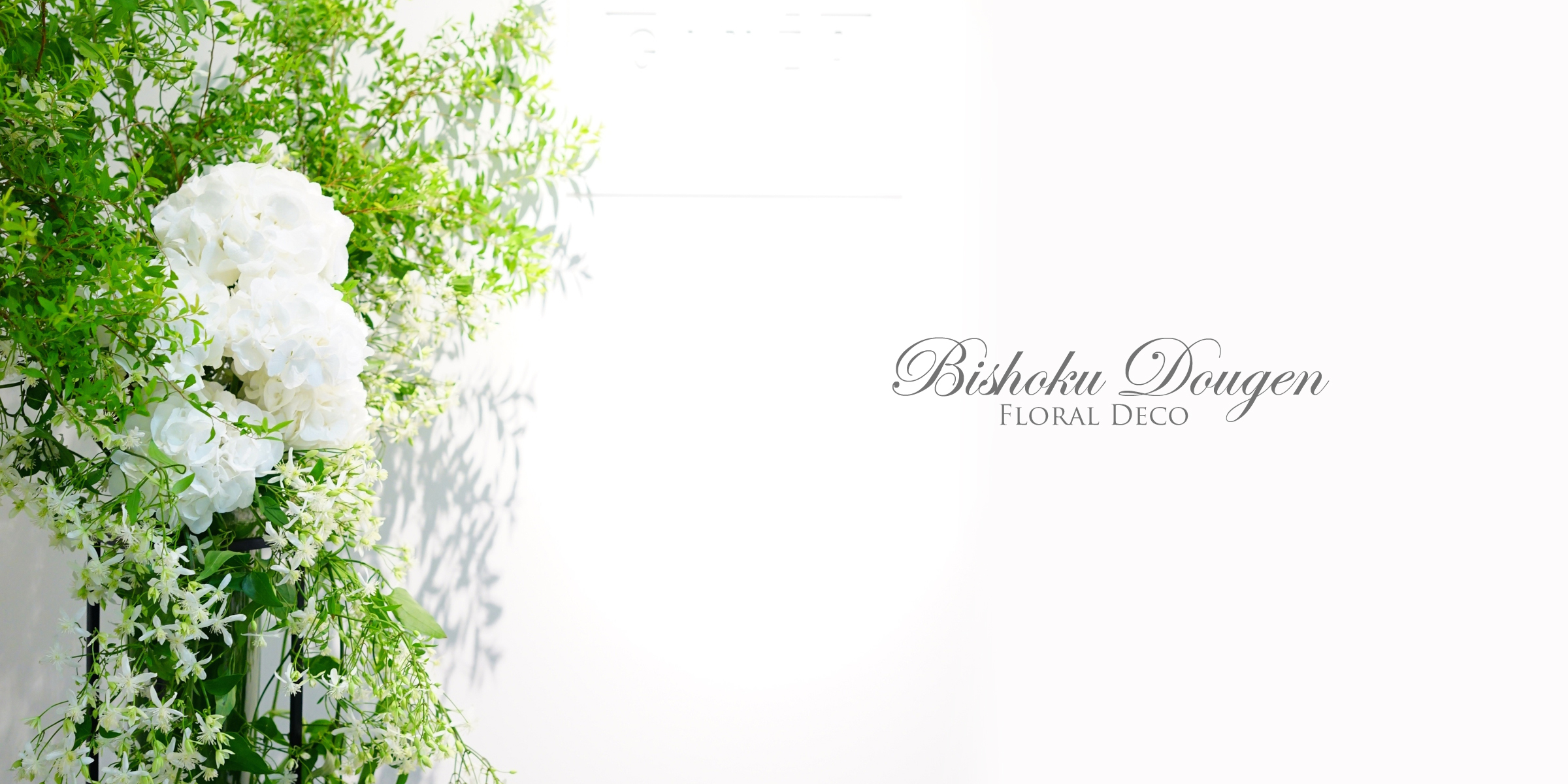 shiseido&dazzle