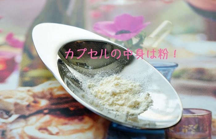 16powder