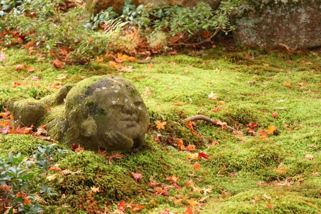 【旅レポ】カメラ女子の秋の京都紅葉狩り:大原三千院編